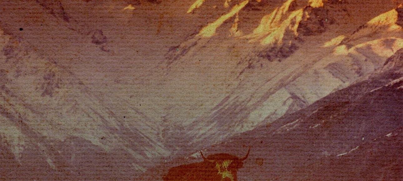dgt_cover_banner_ep43